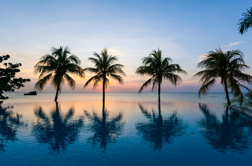 Palm trees silhouetted by a tropical sunset