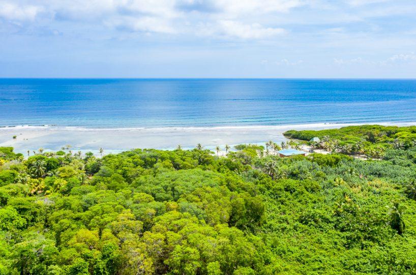 Aerial view over the lush greenery of Roatan island in Honduras, looking out toward the calm Caribbean Sea and horizon beyond | Roatan Life Real Estate